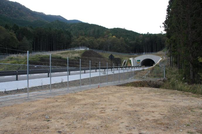 和田山八鹿道路10