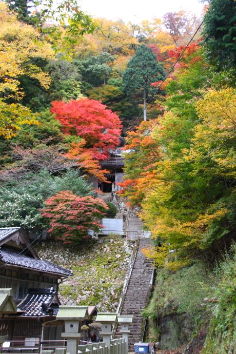 青倉神社5