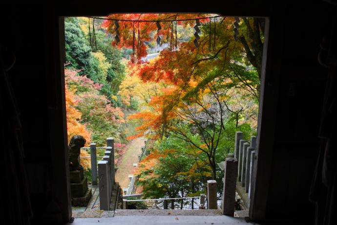 青倉神社1