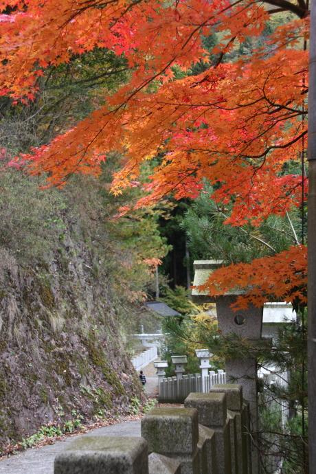 青倉神社3