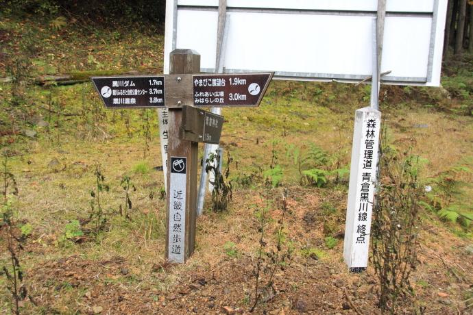 青倉線17