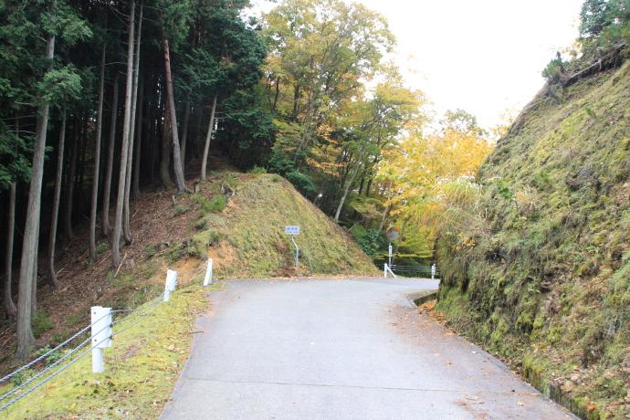 青倉線14