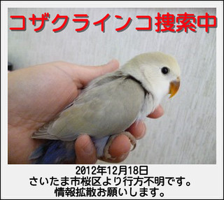 show_image_20121221111943.jpg