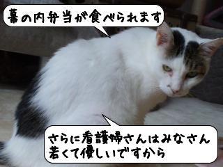めっっせーじ3
