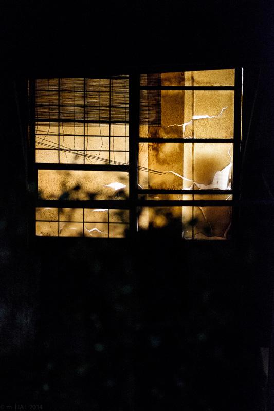 20141025_night_vision-03.jpg
