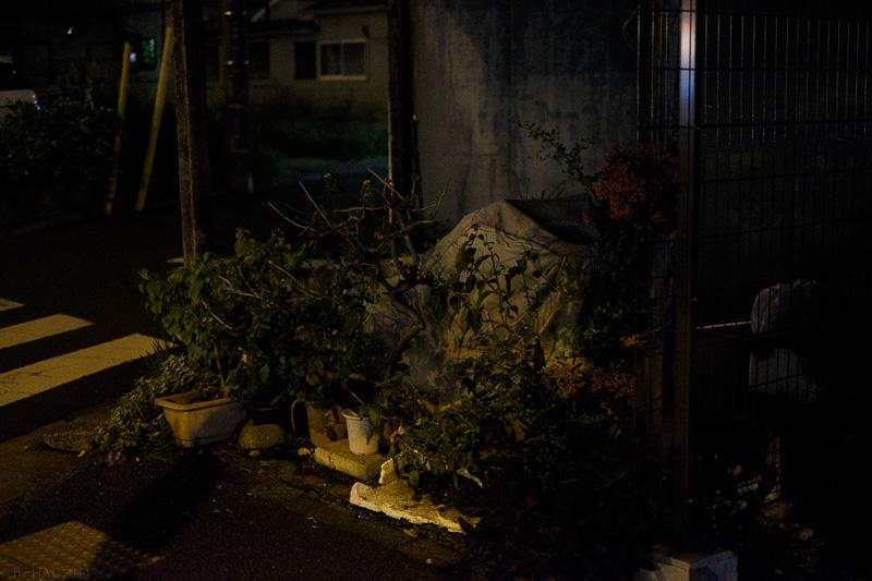 20141025_night_vision-08.jpg