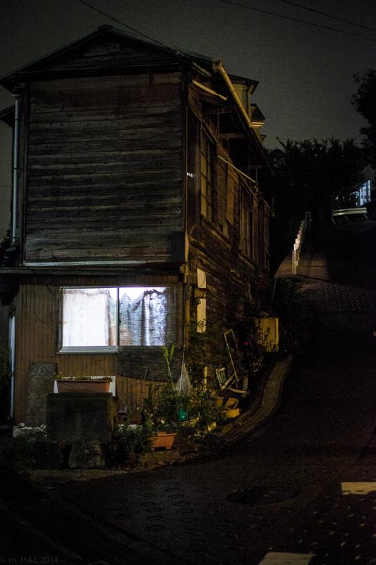 20141025_night_vision-10.jpg