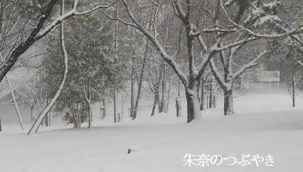 2014-02-14-2_1.jpg