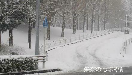 2014-02-14-4_1.jpg