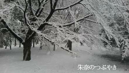 2014-02-14-5_1.jpg