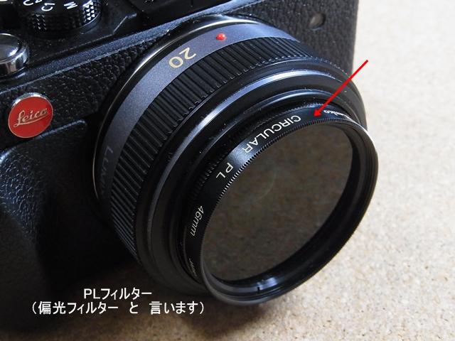 RIMG4461.jpg