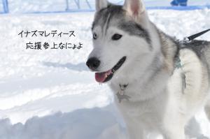 02.12鬼怒川2