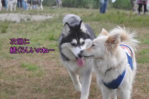 06.03愛ハス2