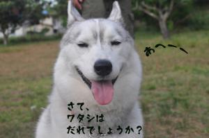 06.03愛ハス32
