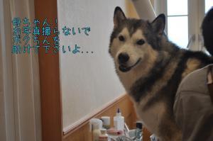 09.23半田ラン9
