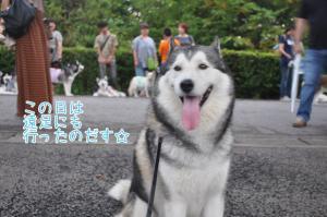 08.05愛ハス遠足13