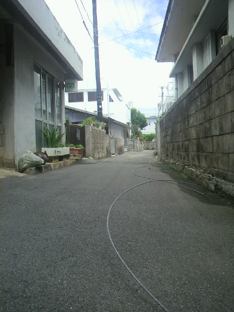 P1002159.jpg