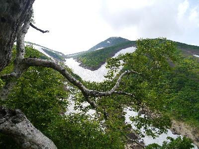 カンクラ雪渓と頂上