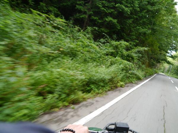 スピード満点buggy