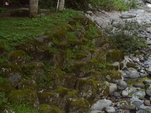 苔が綺麗な石段