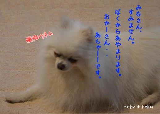 003_20120522221539.jpg