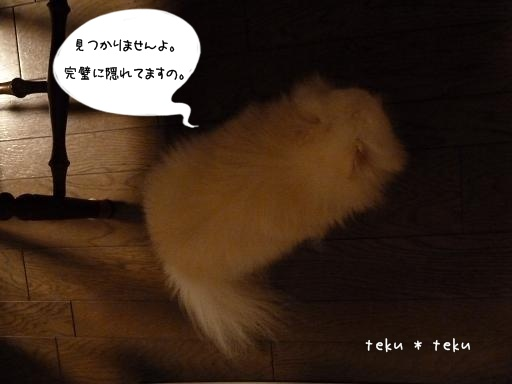 P1170414.jpg