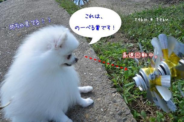 ne_20121023200719.jpg