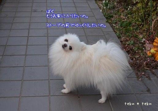ne_20130116211714.jpg