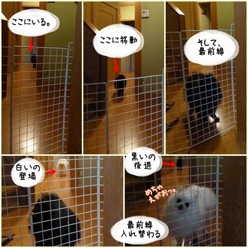 page_20120608233730.jpg