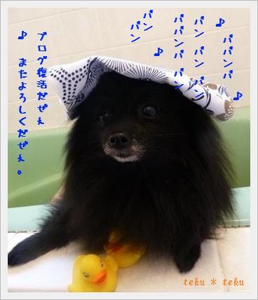si_20120501213117.jpg