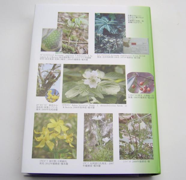 橋本光政 『兵庫県 花の歴史探訪』 裏表紙