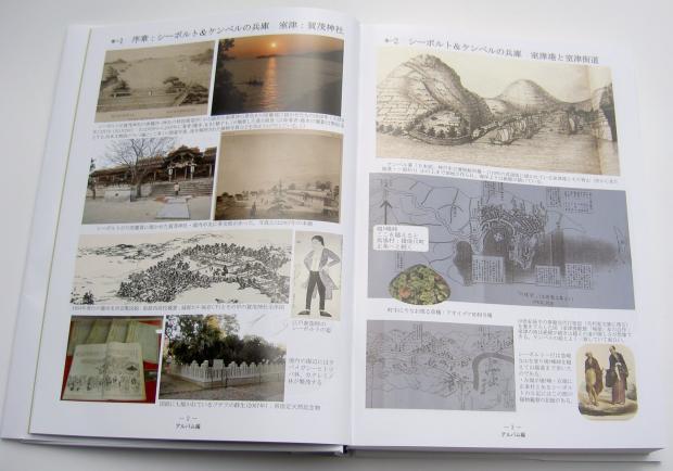 『兵庫県 花の歴史探訪』 中身一見
