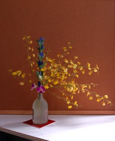 「写真で散歩」花を愛でる。敬老の日にいただい花で活けてみました。『名づけてウェブのハナメデ運動2回目』