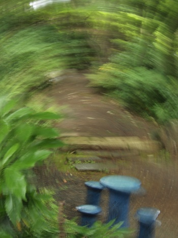 「写真で散歩」畠山記念館で偶然撮れたのがこの写真
