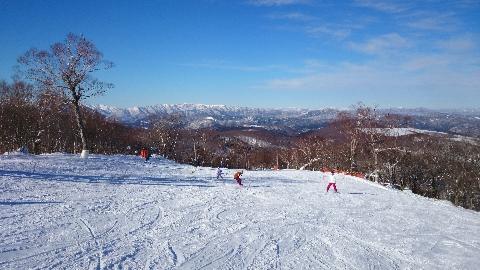 ゆきー!スキー!