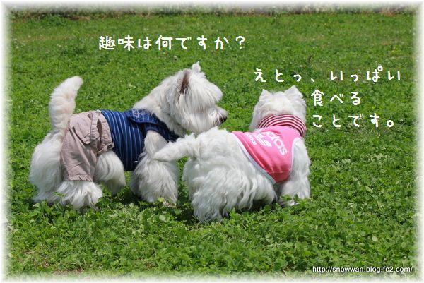018_20120623003447.jpg