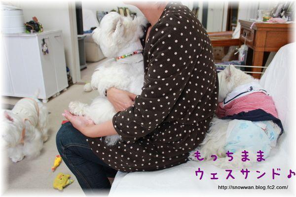 037_20120610152043.jpg
