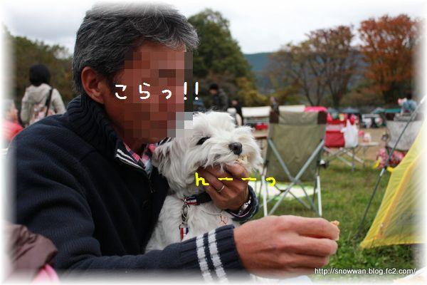 038_20121116031326.jpg