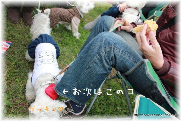 039_20121116031326.jpg