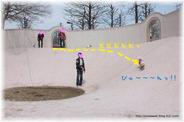 107_20120521152742.jpg