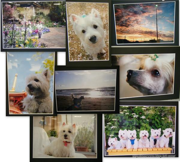 2012-07-13写真展3