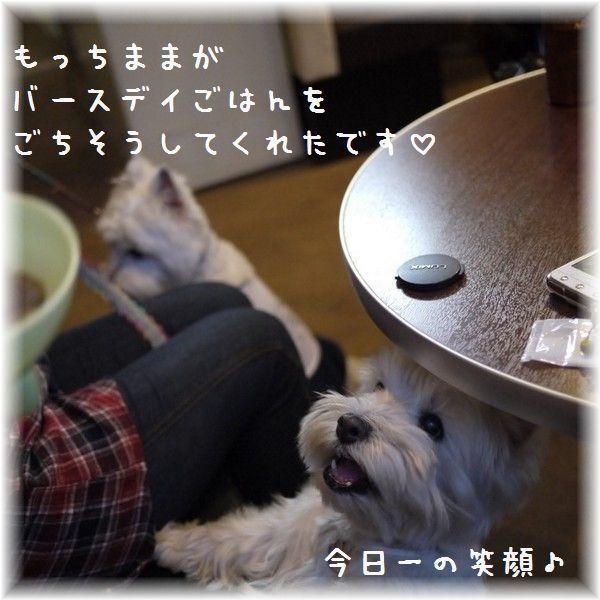2012_1111PV_20121116031916.jpg