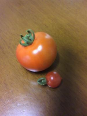 トマト20120703