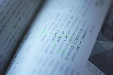 DSC06016_20121026231835.jpg