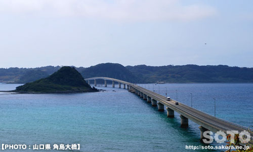 TOP_2012初夏