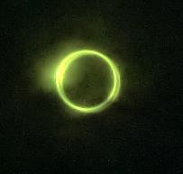 20120521金環日食0