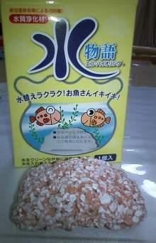 20120806金魚2