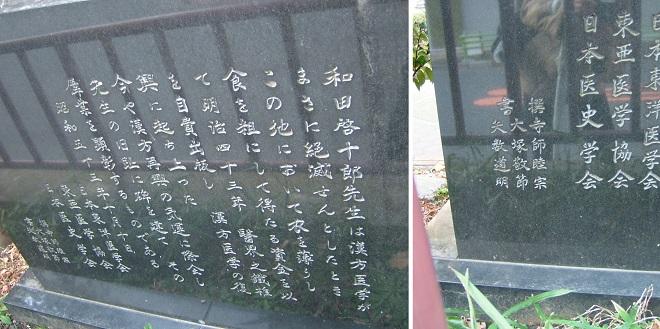 漢方医学復興之地 (2)