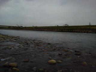 20120502kuzuryu1