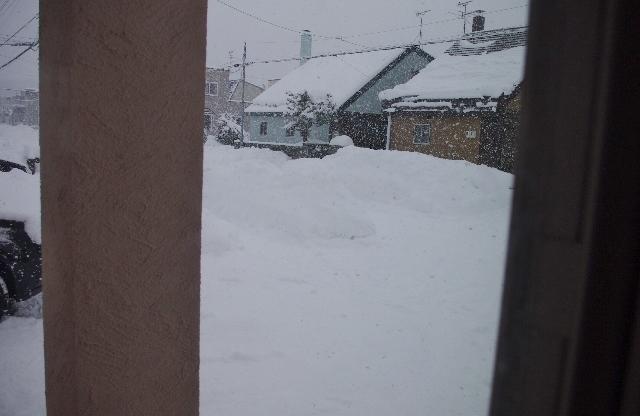 雪IMGP4936